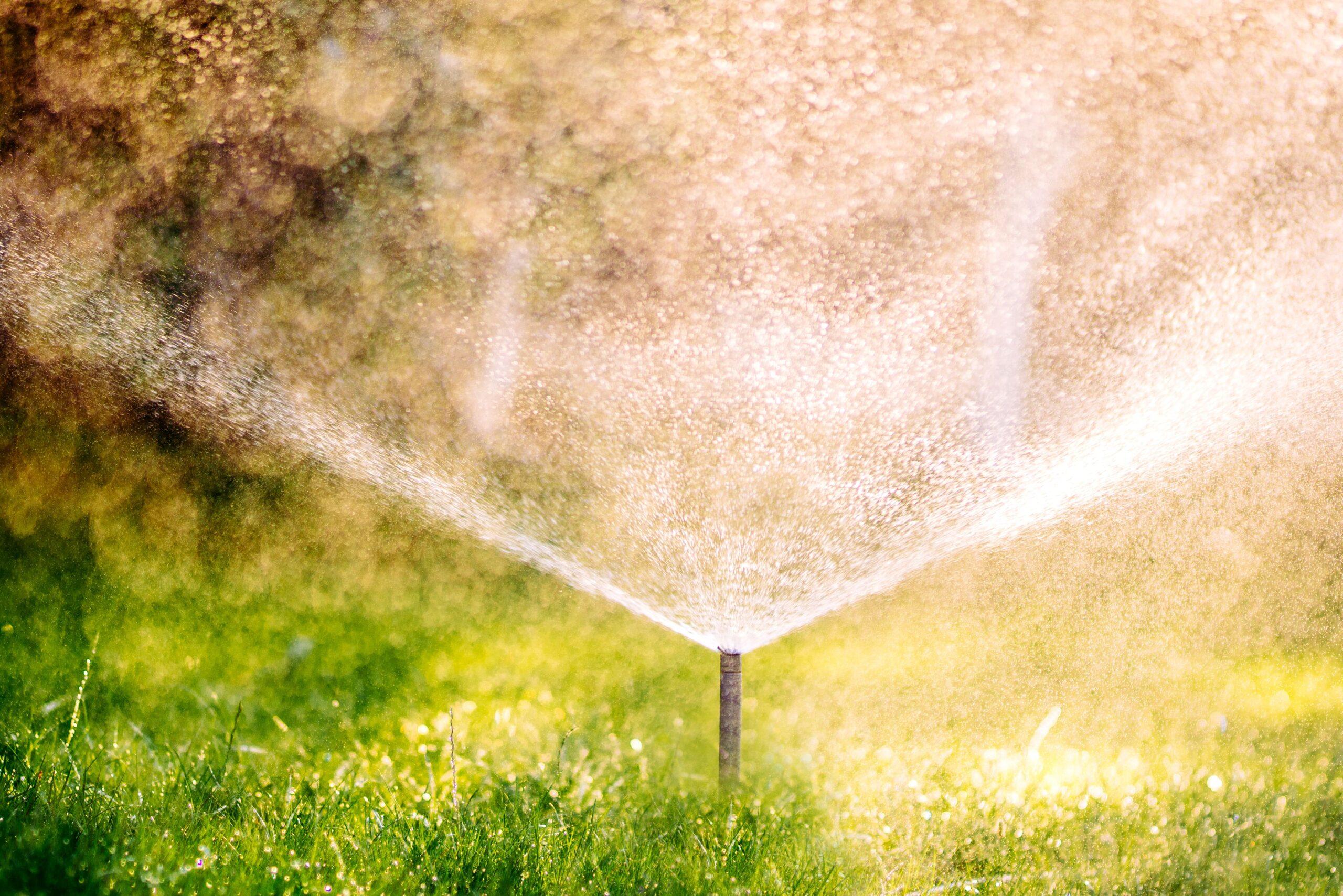 close-up-details-of-automatic-lawn-pop-up-sprinkle-KVZMPKX-min